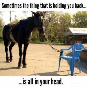 paard aan stoel wat je tegenhoudt zit in je hoofd